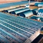 Продается тепличное хозяйство в Калужской области
