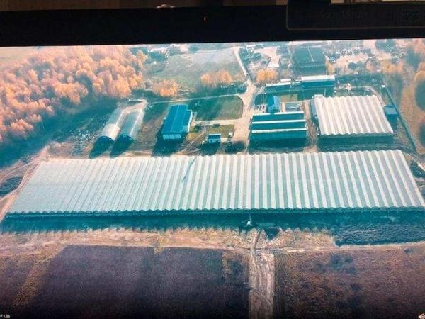 Продается тепличное хозяйство в Калужской области 2